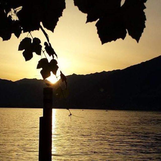 autumn autunno ticino tessin ticinese svizzera schweiz schwiiz suisse lakemaggiorehellip